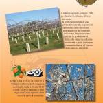 impaginato1.parco_Pagina_06