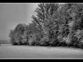 marcomariani-inverno